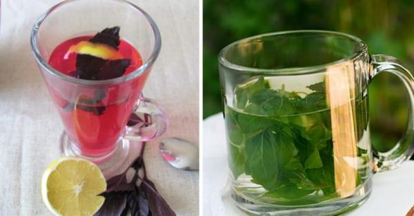 5 весомых причин пить чай с базиликом